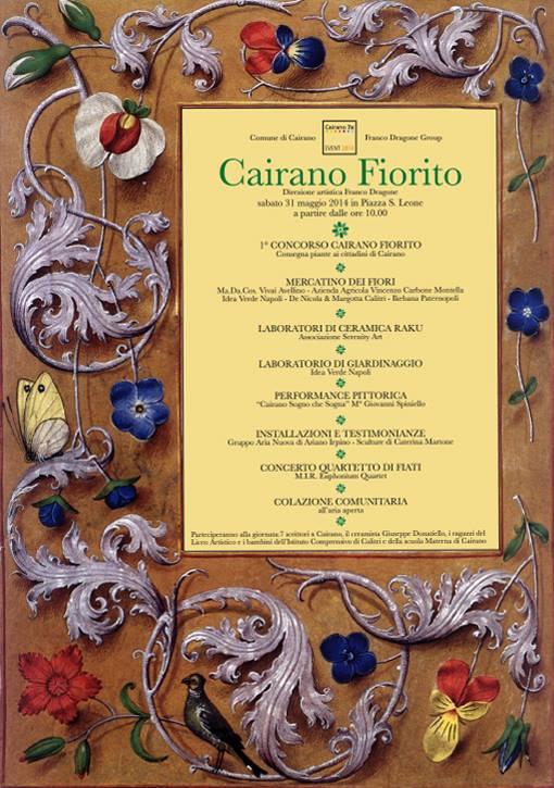 ECCO CAIRANO 7X 2014 (2/4)