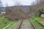 08-03-2015 Giornata delle ferrovie dimenticate (2)