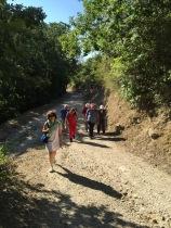 -cairano 7x 2016 sentiero arcaico 3
