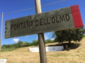 2017 05 07 Cammino di Guglielmo _ foto angelo verderosa8023