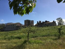 2017 05 07 Cammino di Guglielmo _ foto angelo verderosa8129