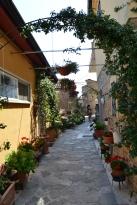 Cairano, borgo fiorito _ foto Francesca Pitisci